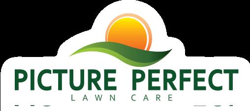 pictureperfect Logo